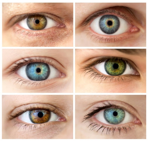 Personalities connected to specific eye colors