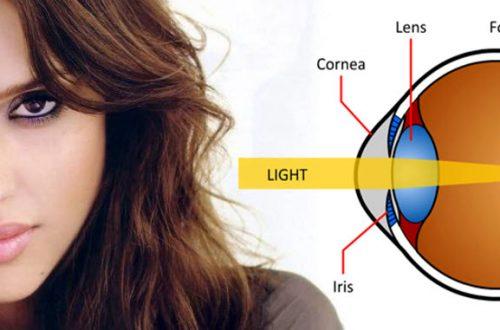 Your corneas